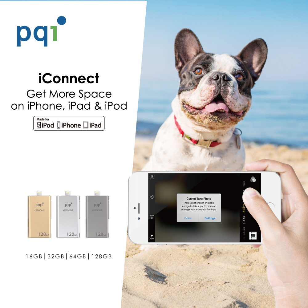 iConnect Dog